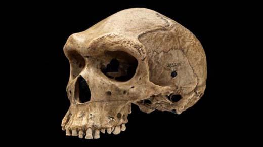 ¿Fue un Neanderthal disparado por un viajero del tiempo?