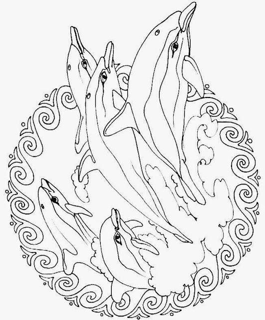fish mandala dolphins free printable coloring pages coloring.filminspector.com