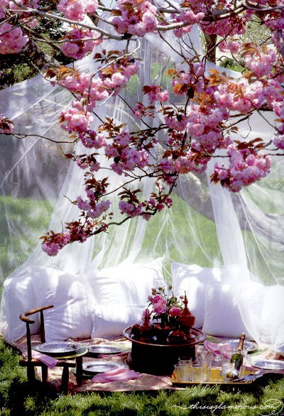 Romantic Backyard Date Ideas : Last minute idea to decorate the table for Valentines day? Bring out