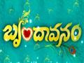 Brindavanam Zee Telugu Serial