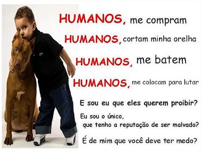 Pit Bulls | Imagens Facebook | Mensagens para Facebook