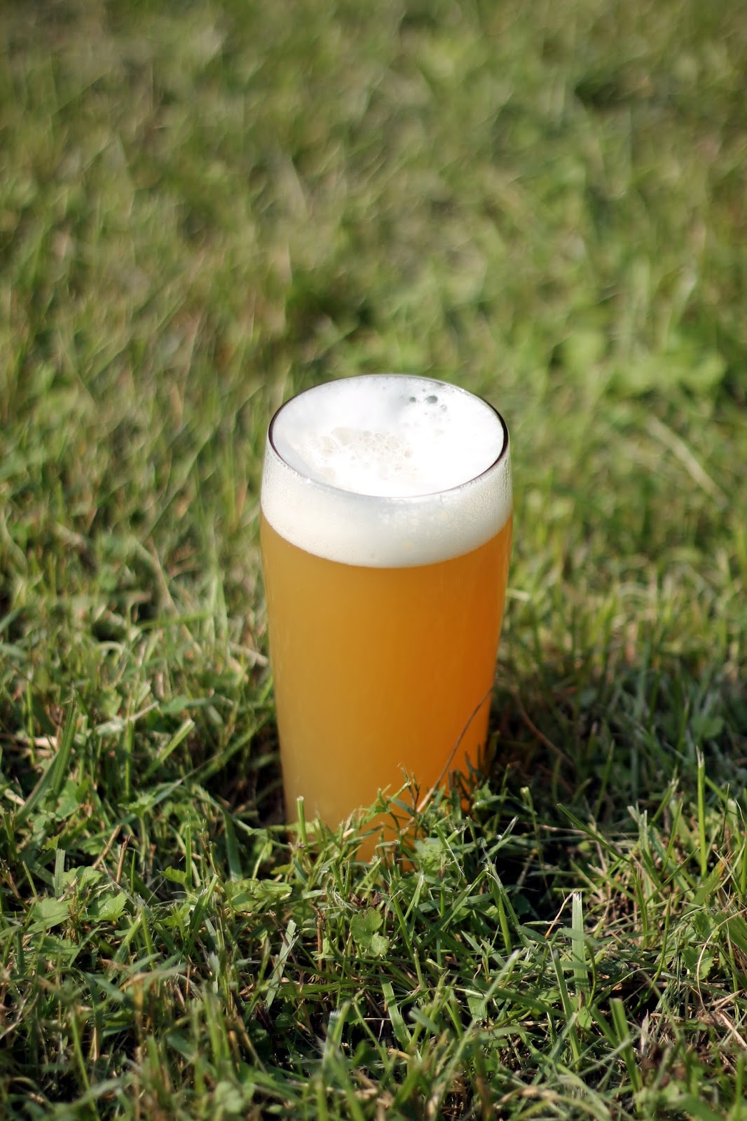 Soft & Juicy IPA, on my freshly cut lawn (as you can tell I take the if it's green it stays approach to grass management)