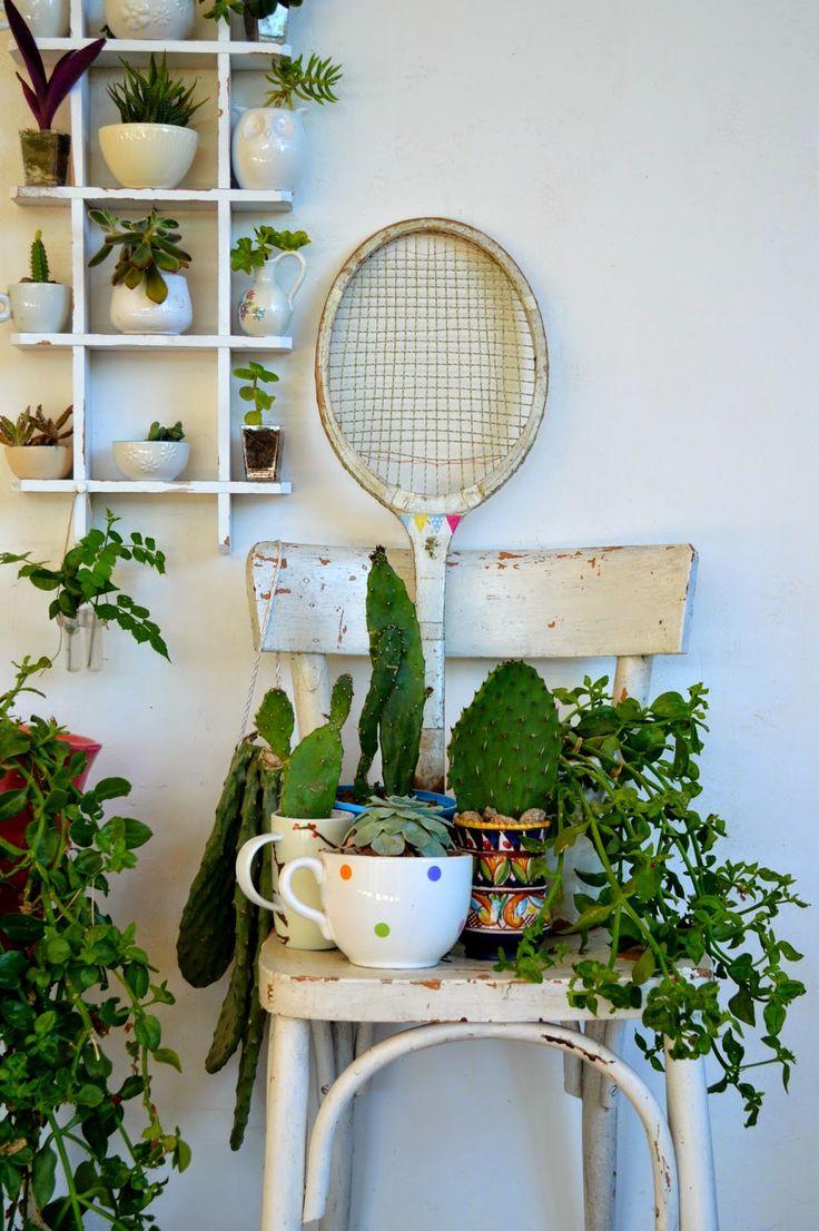 plante interieur vintage