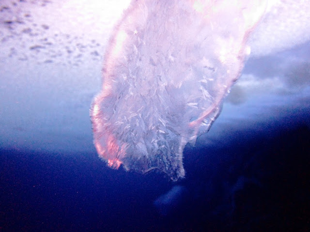 The open end of a brinicle, where cold, dense fluid emerges into the seawater.