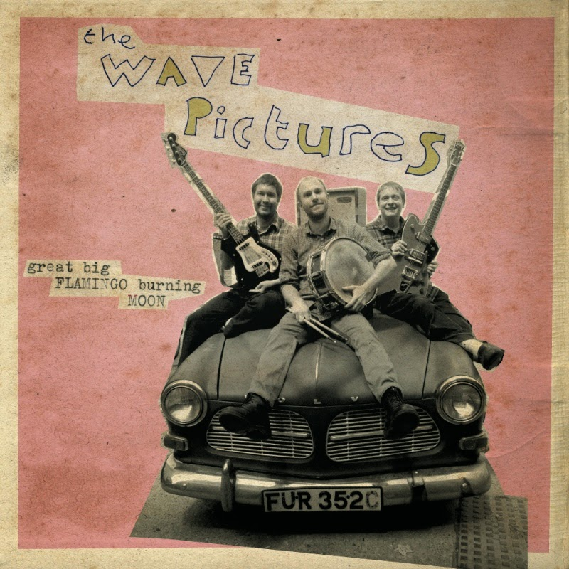 THE WAVE PICTURES - (2015) Great big flamingo burning moon