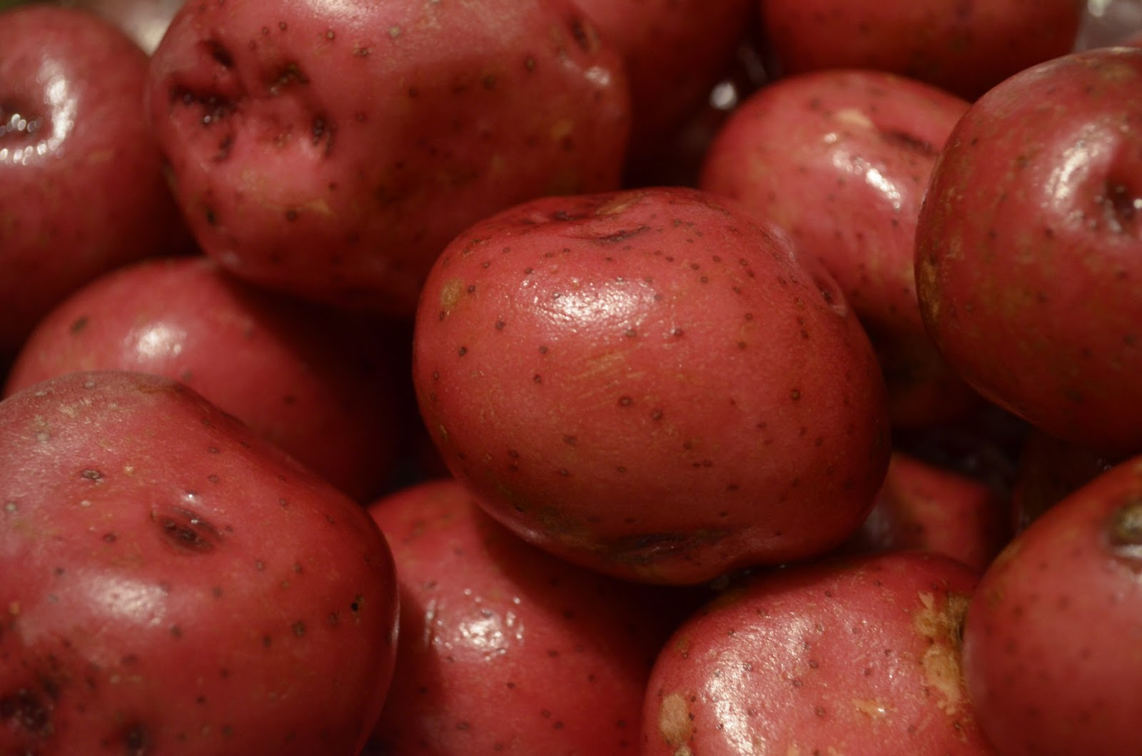 scrub up a couple of pounds of red bliss potatoes