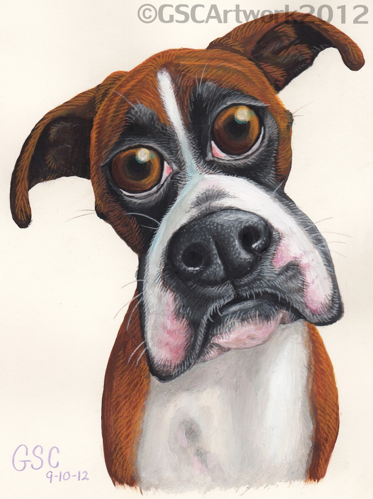 Boxer Dog Cartoon Drawing