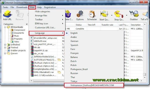 Internet Download Manager - Download