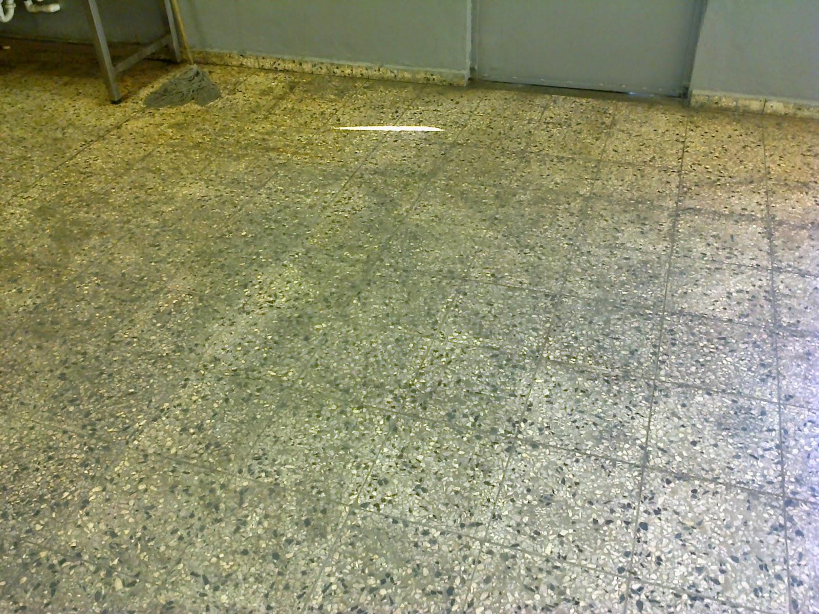 Cleaner dominicana mantenimiento y cristalizado de piso for Pisos de granito
