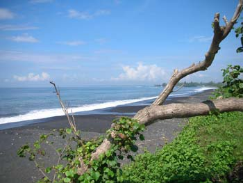 Beachfront Land 50 % off 2014 Price
