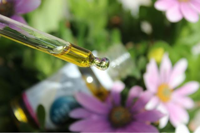 Viridian Organic Nail and Cuticle Oil