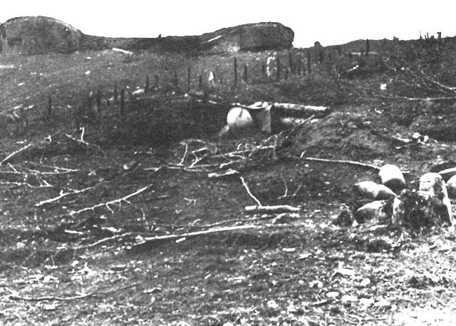 """Ρούπελ 1941: """"Τα οχυρά δεν παραδίδονται, αλλά καταλαμβάνονται"""" Campaigns17hh2"""