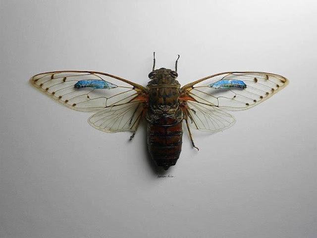 micro obras de arte sobre mariposas