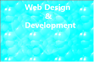 Web Design Bangladesh:   Internet Marketing and Professional Web Design Importance