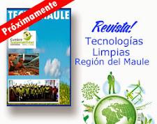 Revista TECNOMAULE