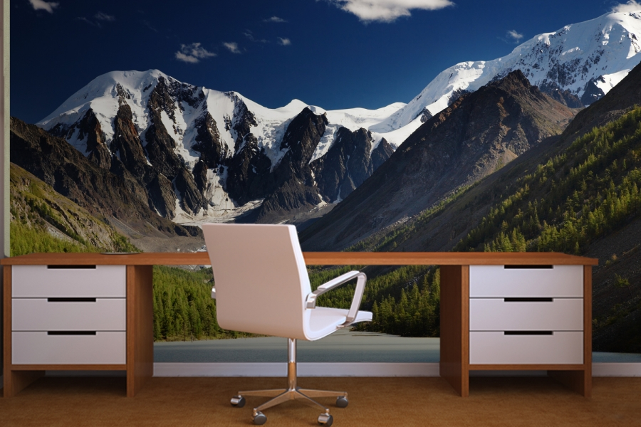 And the winner of the giveaway is modern diy for Diy mountain mural