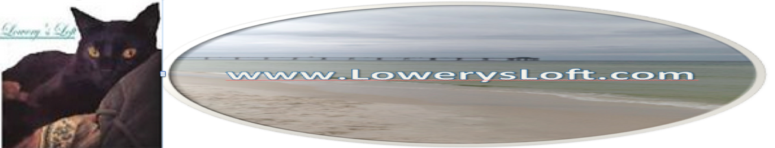 Lowery's Loft LLC