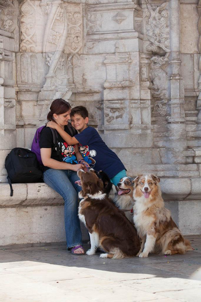 Australian Shepherd in Portugal - Jerónimos
