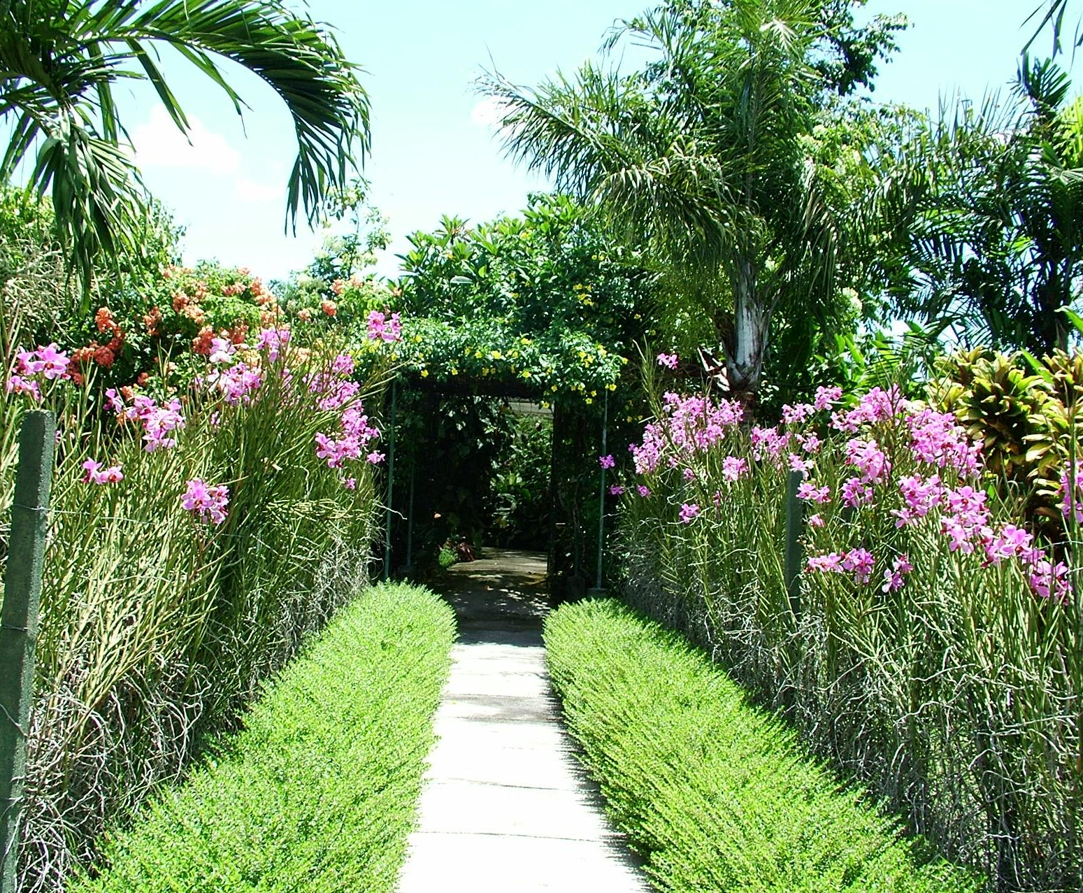The Tropical Garden, For Example, Is Dominated By The Type Of Plants