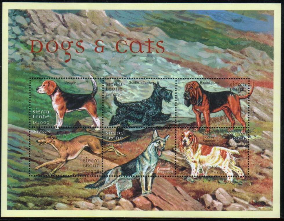 年度不明シエラレオネ共和国 ビーグル、スコティッシュ・テリア、ブラッド・ハウンド、グレーハウンド、ジャーマン・シェパード、コッカー・スパニエルの切手シート