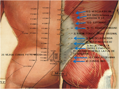 ver video operacion sinusitis: