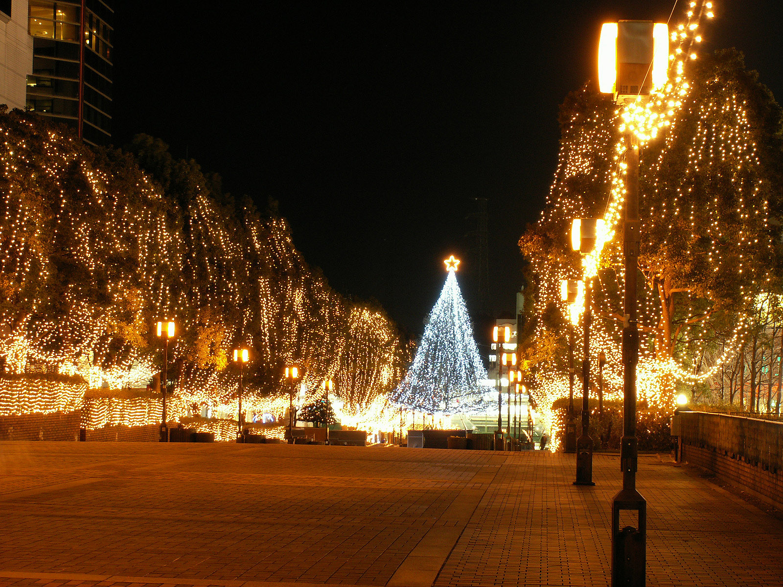http://1.bp.blogspot.com/-ooGV-zZFvAg/TvWOrMGZSpI/AAAAAAAABSE/uiCYpXEn3No/s1600/wallcoo.com_Christmas_wallpaper_christmas_Night_view_121.jpg