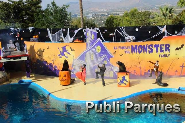 espectáculo de leones marinos Halloween en Mundomar
