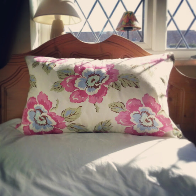 Amy Butler fabric cushion
