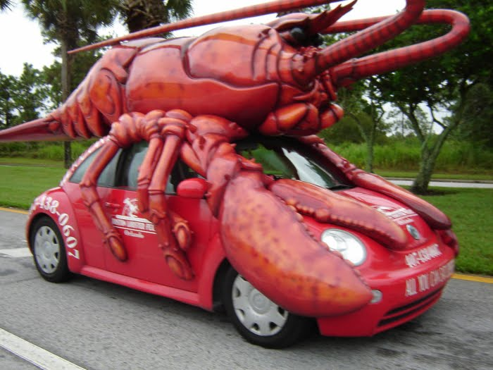 Lobster anyone?