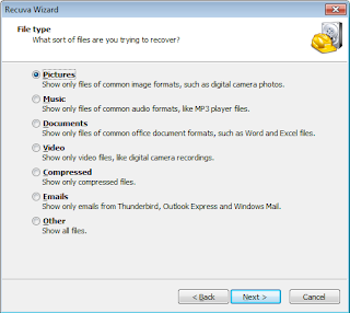Select which type of files you want to recover.