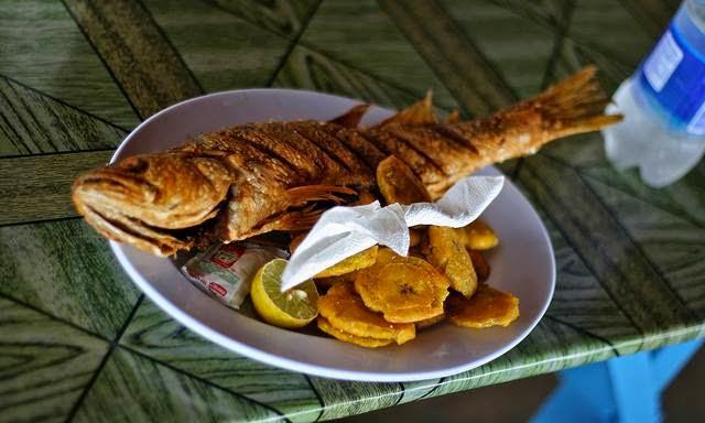 Slow food panama influencias internacionales en la comida for Alta cuisine panama