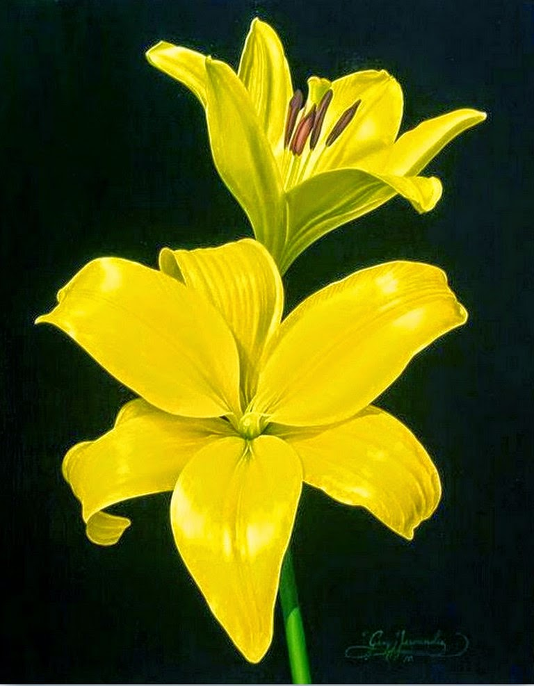 cuadros-de-flores-grandes