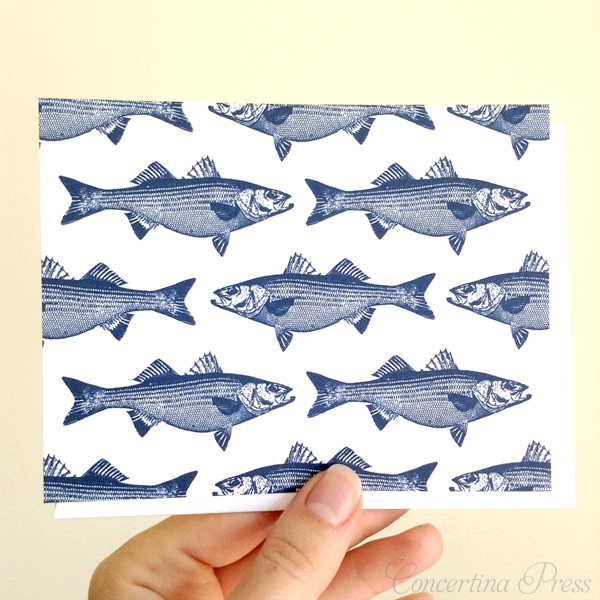 blue striped bass notecard set from Concertina Press