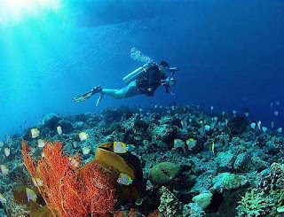 Nusa Penida Diving
