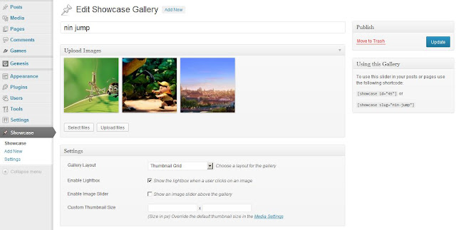 Showcase-image-ultimate-gallery-plugin-dav7studio-nivo-gallery