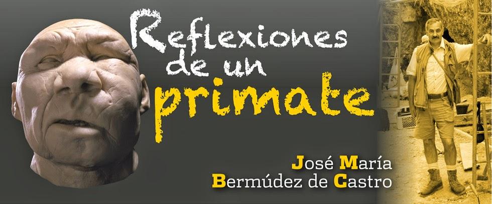 reflexiones, primate, antropología, jose maria bermudez de castro, atapuerca