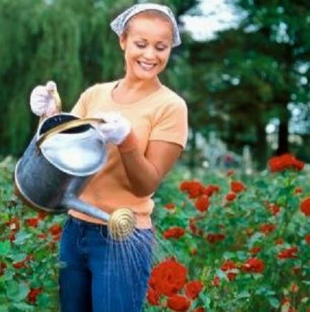 10 Maneras de Usar Agua de Lluvia