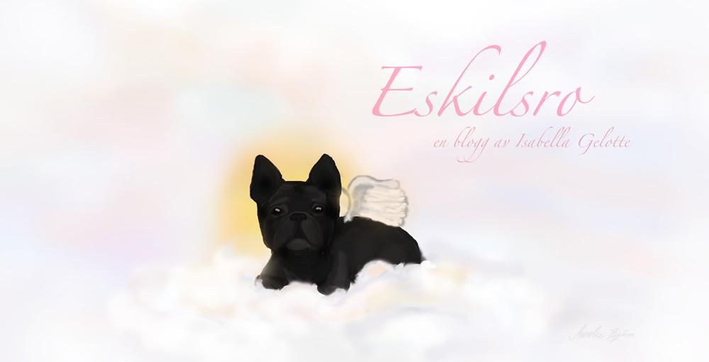 Eskilsro