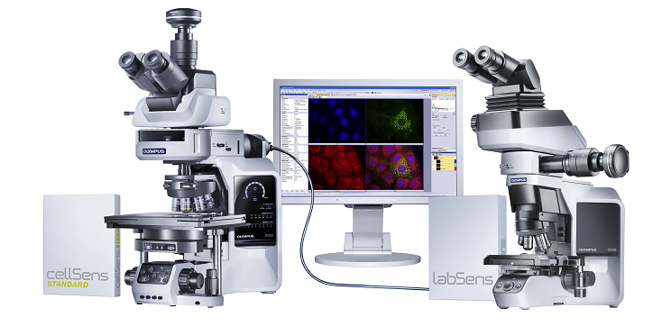 Microscopes Types Pictures Types of Microscopes Are
