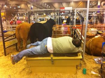 Cowboy had too much beer.