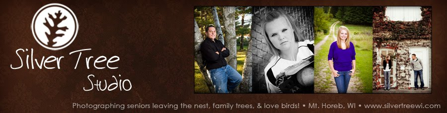 Silver Tree Studio, Krystal Sutter, Senior, Family & Professional Photographer, Mt. Horeb, WI