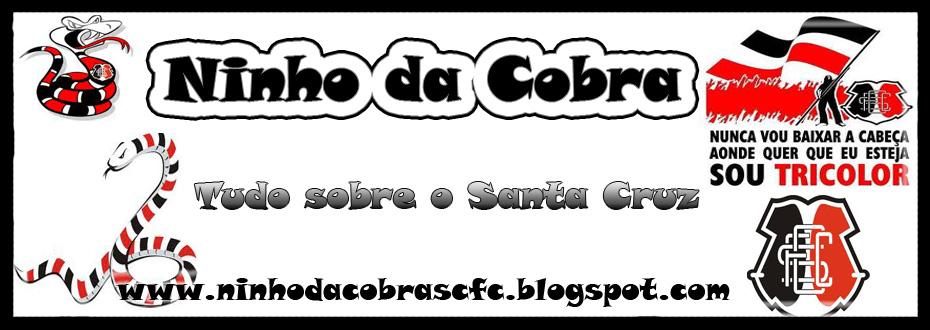 Ninho da Cobra