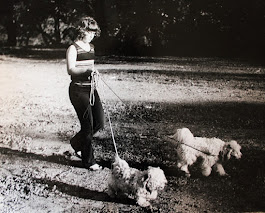 Piper walking the family dogs...