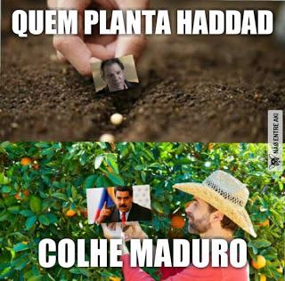 VENEZUELIZAR O BRASIL, NUNCA!!!