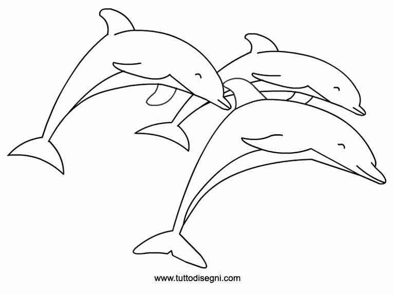 Disegni da colorare delfini for Delfino disegno da colorare