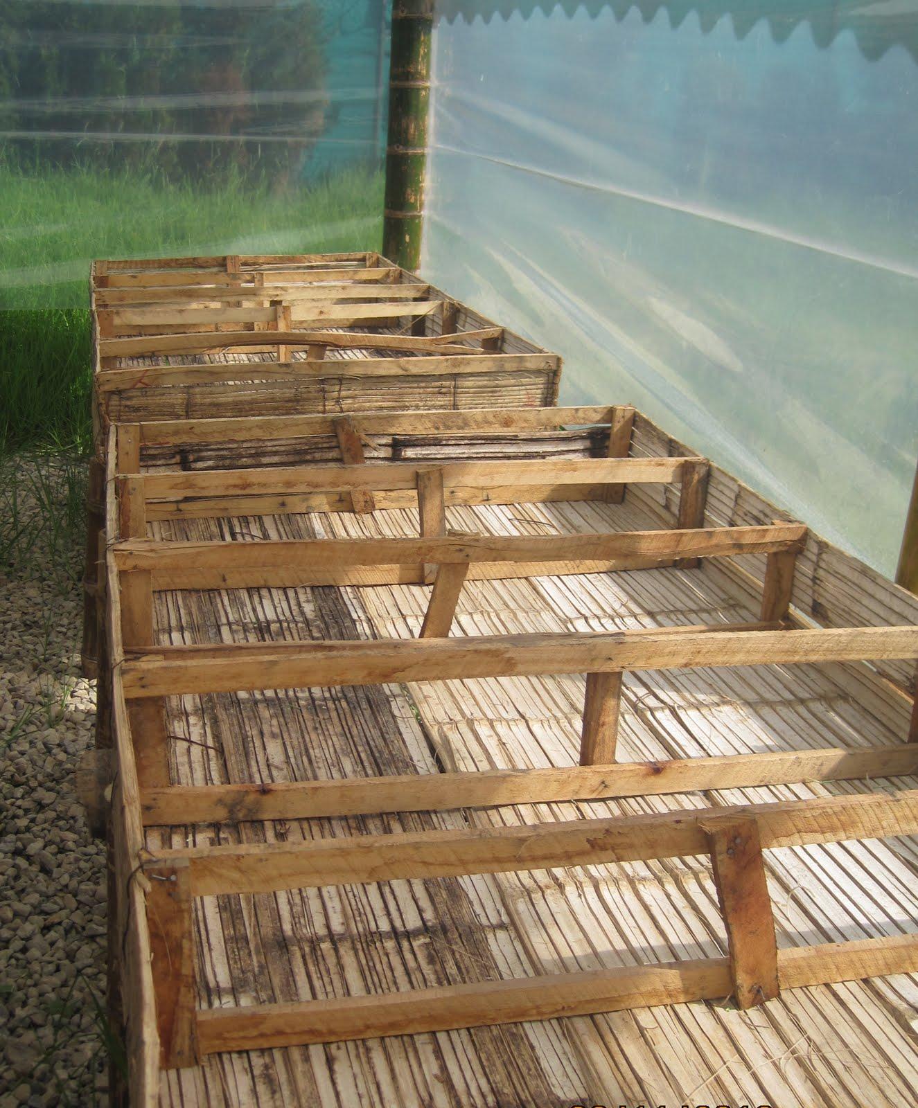 Ecolideres gimfa construcci n del vivero for Construccion de viveros