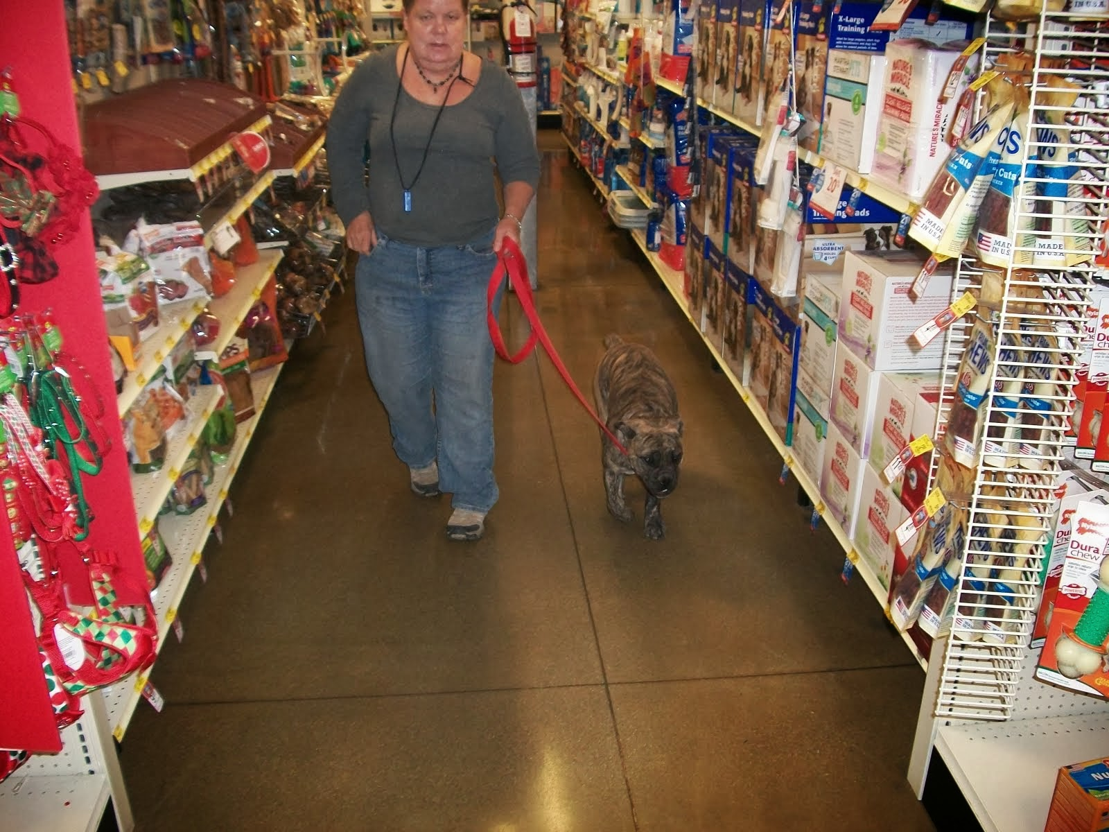 Training Willy @ Petsmart