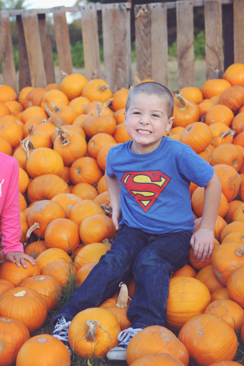 Pleasant Valley Farms Pumpkin Patch