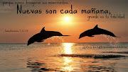 IMAGENES DE PORTADA CRISTIANAS PARA GOOGLE PLUS delfines