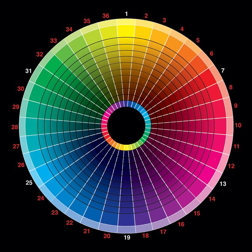 Hair fashion and beauty a fashion closet detox part - Show color wheel ...
